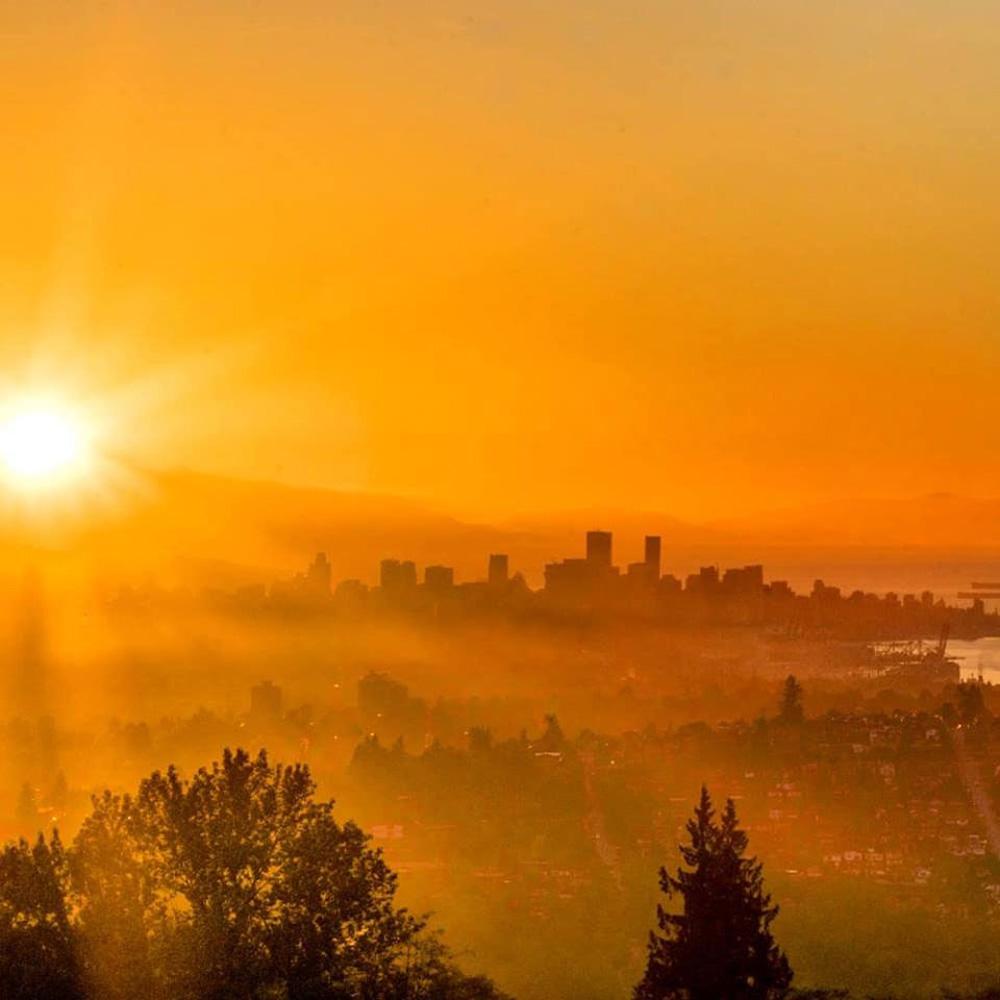 バーナビーの雲海と日の出