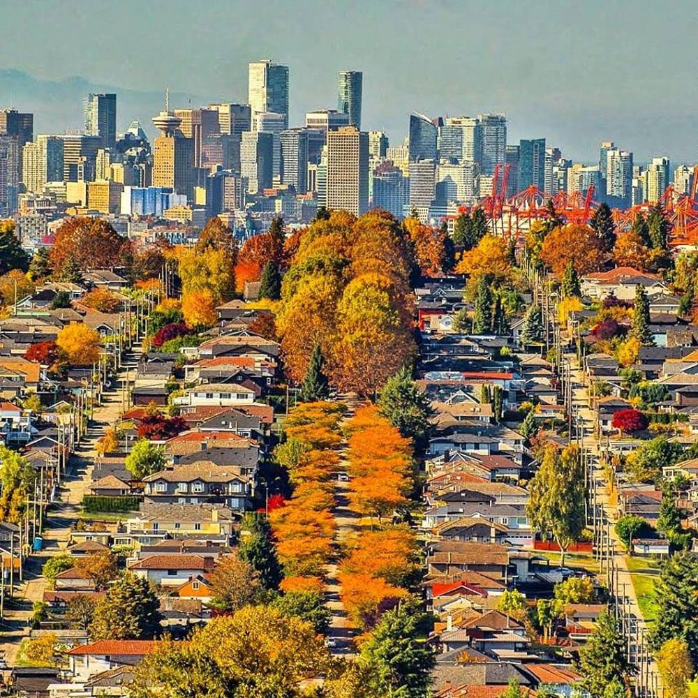 バーナビーの秋と街並み
