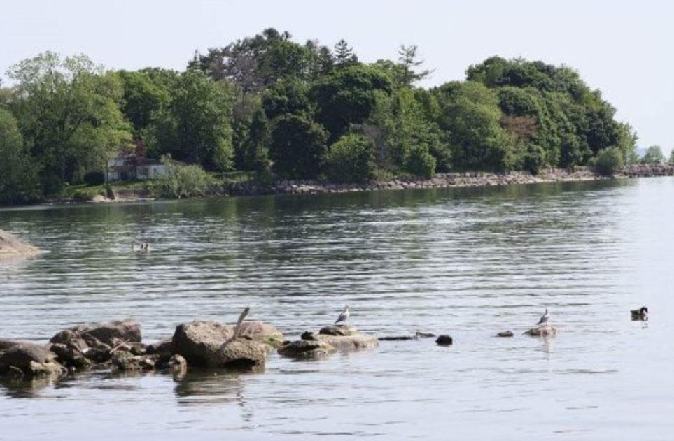 ミシサガの湖