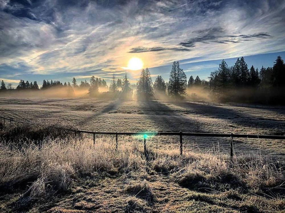 ラングレーの町と霧