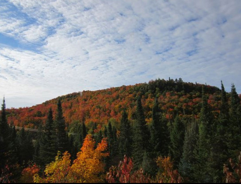 スーセントマリーの秋の山