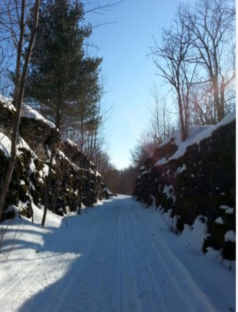 スミスズフォールズの冬の道