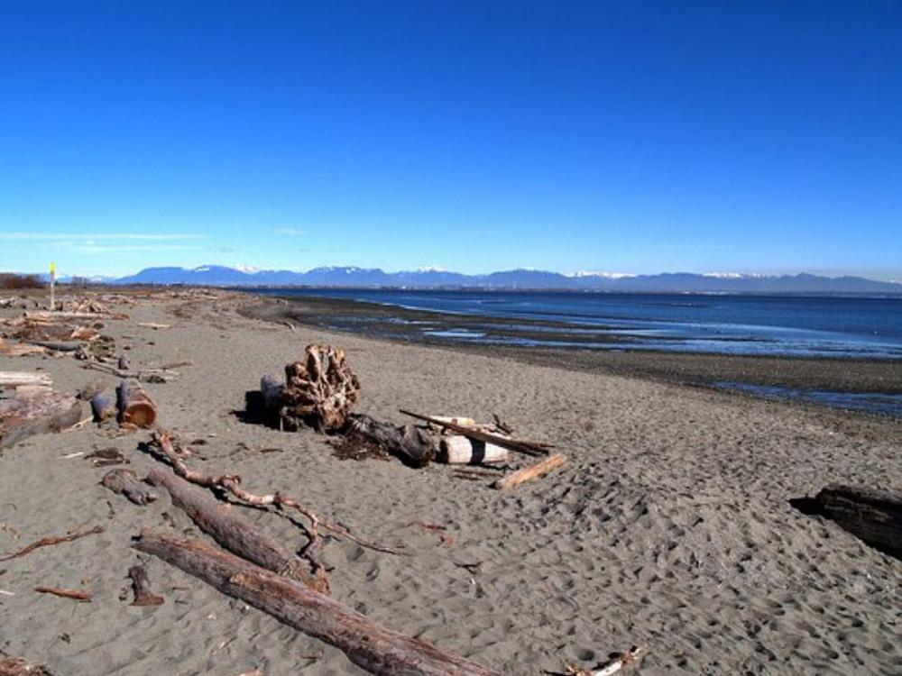 デルタの美しい海岸