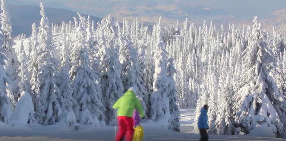 バーノンのスキー場