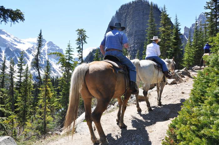 様々なアクティビティ ロッキー山脈で乗馬