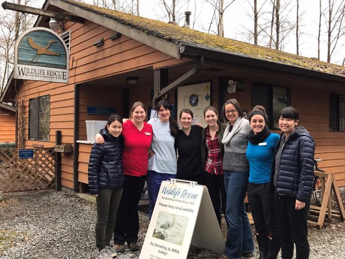 仕事体験 in カナダ バンクーバー Reikaさん & Yukiさんの動物保護団体でのインターンシップ