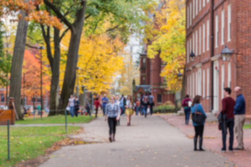 大学のキャンパスの風景