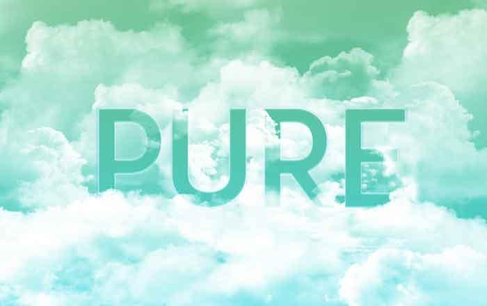 願いと想いを込めた会社名 PURE Canada