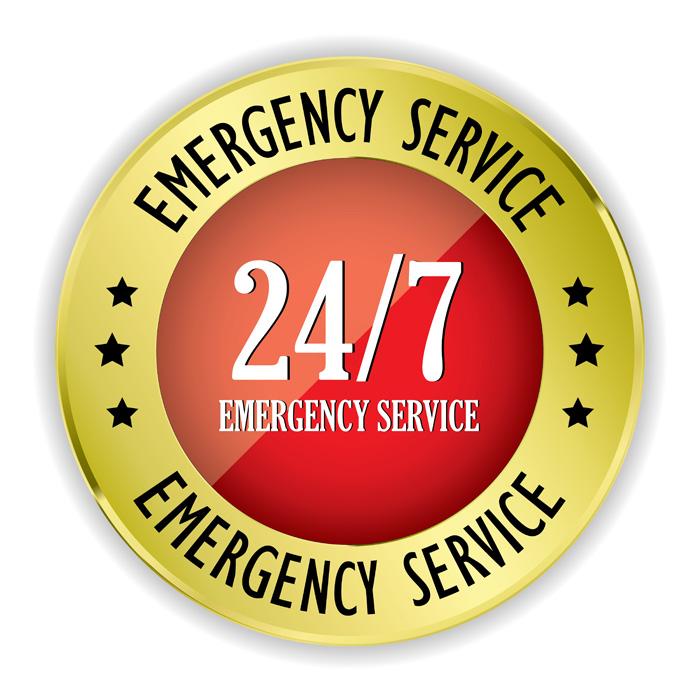 サービス(カナダ) 緊急時の24時間対応