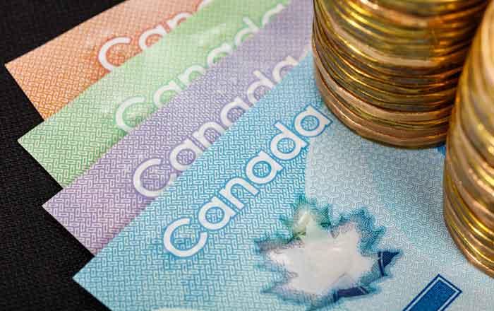 カナダドル 通貨 紙幣とコイン
