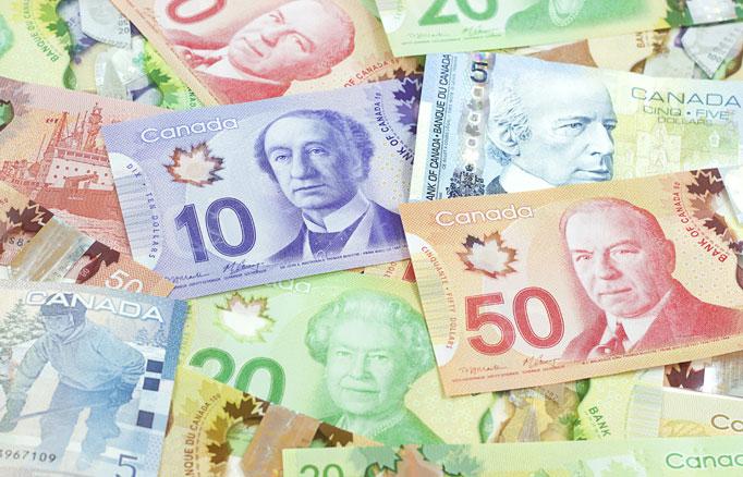 留学費用を考える カナダドル紙幣