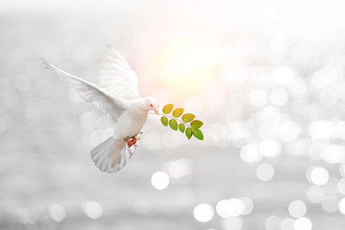 超緊急時の対応 平和の象徴