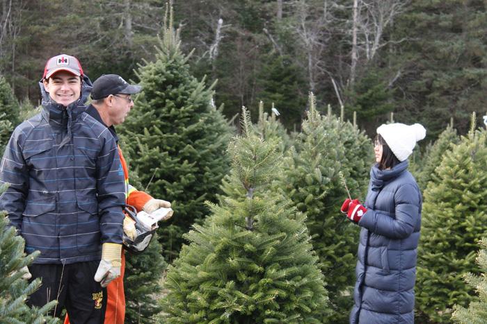 高校留学 ニューブランズウィック州 クリスマスツリーを選ぶ Harunaさん