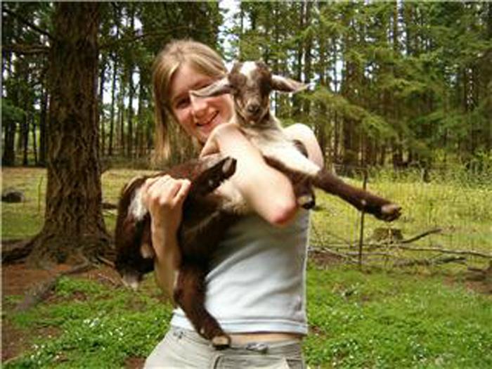 ファームステイ ヤギの飼育 Ainaさん