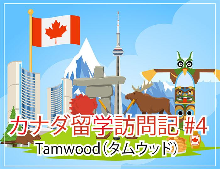 学校訪問記 #4 Tamwood
