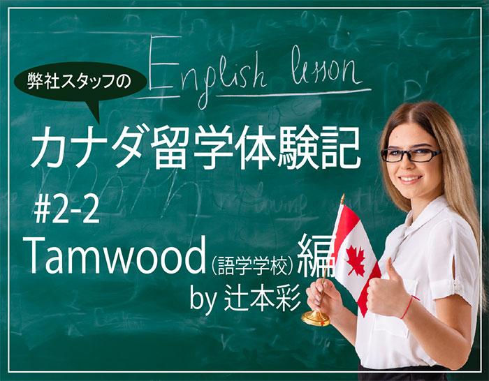 学校体験記 #2-2 Tamwood語学学校 by 辻本彩